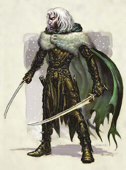 IMAGE(http://img2.wikia.nocookie.net/__cb20051003220637/forgottenrealms/images/thumb/5/55/Drizzt_Pic_1.jpg/250px-Drizzt_Pic_1.jpg)