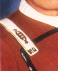 Captain rank pin