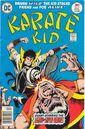 Karate Kid 6.jpg