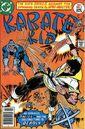 Karate Kid 7.jpg