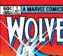 Wolverine Comic Books