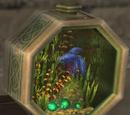 Fighting Fish Tank