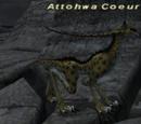 Attohwa Coeurl