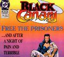 Black Canary Vol 2 11