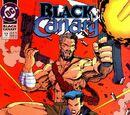 Black Canary Vol 2 12
