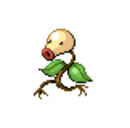 Bellsprout DP.png