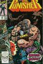Punisher Vol 2 32.jpg