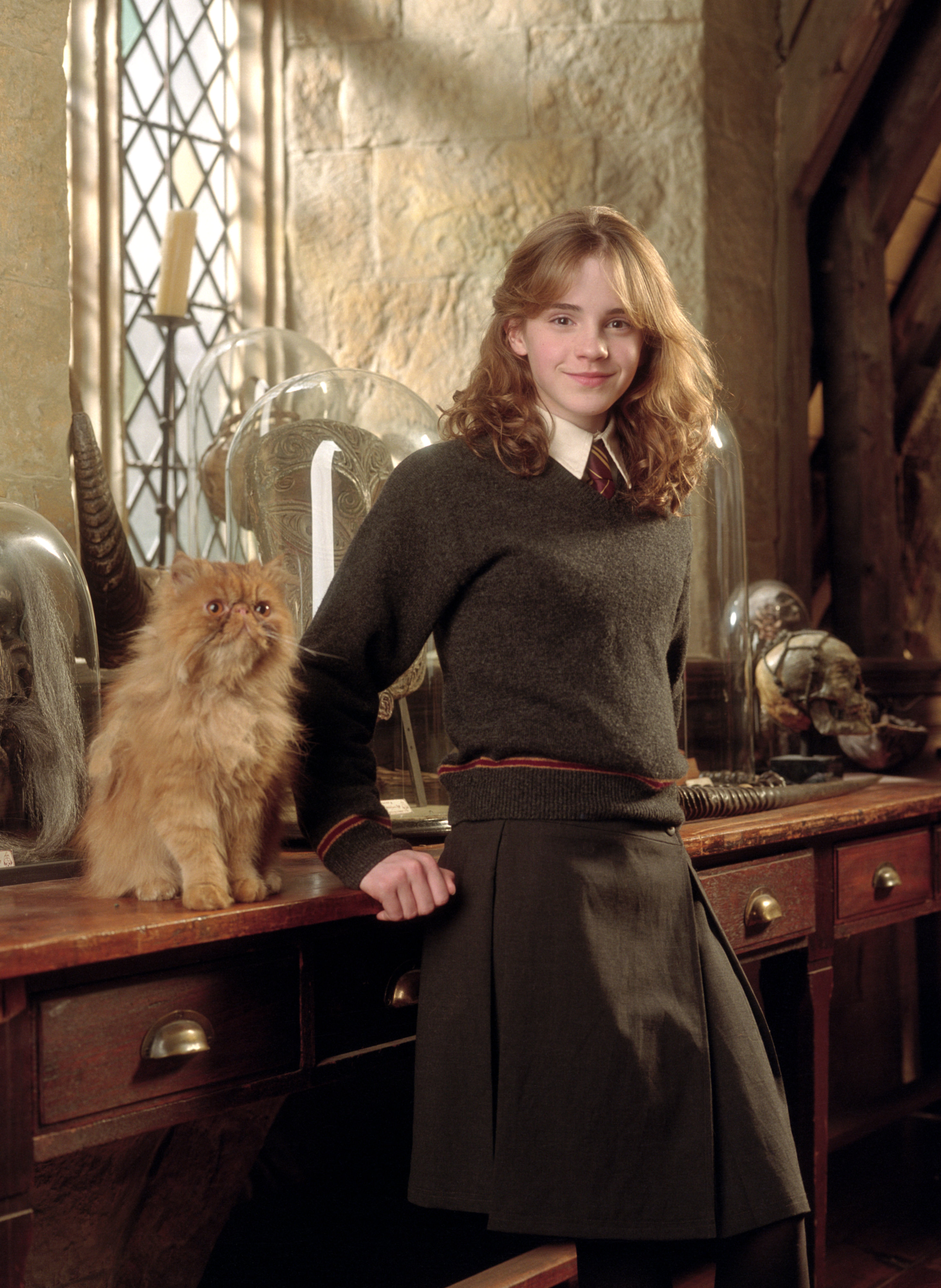 10 Crazy Cat Ladies in Movies and TV, from 'The Simpsons ...  |Harry Potter Hermione And Crookshanks