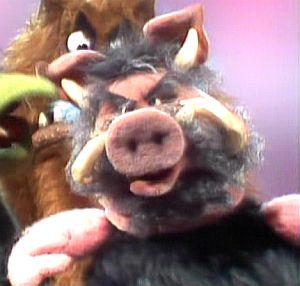 Warthog Muppet Wiki