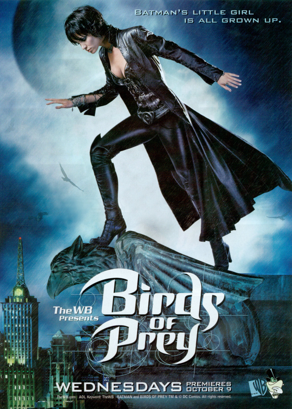 Birds of prey tv series - photo#3
