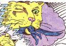 PG's cat 07.jpg