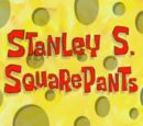 122 Conch Street/gallery/Stanley S. SquarePants