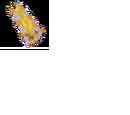 Capa de Shika