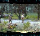 Lumberjacks' glade