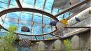 Aqua palace.jpg