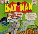 Batman Vol 1 144