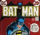 Batman Vol 1 245