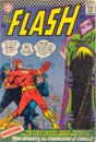 The Flash Vol 1 162.jpg