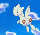 Togetic de Misty