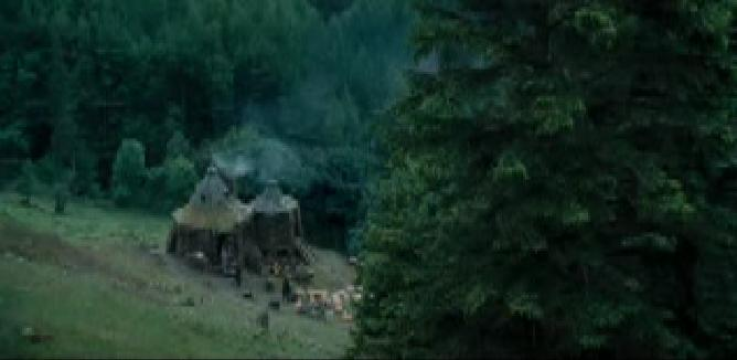 Image hagrid 39 s hut view from the stone What house was hagrid in