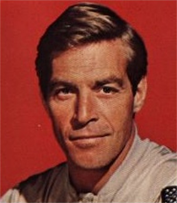 James Franciscus Net Worth
