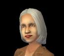 Creativity Sims