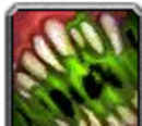 WoW иконки: Ability Creature Poison