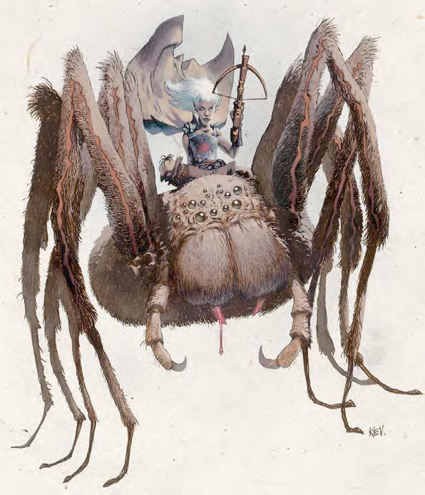 Arachne - The Forgotten Realms Wiki - Books, races, classes, and more