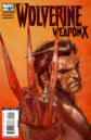 Wolverine Weapon X Vol 1 1.jpg