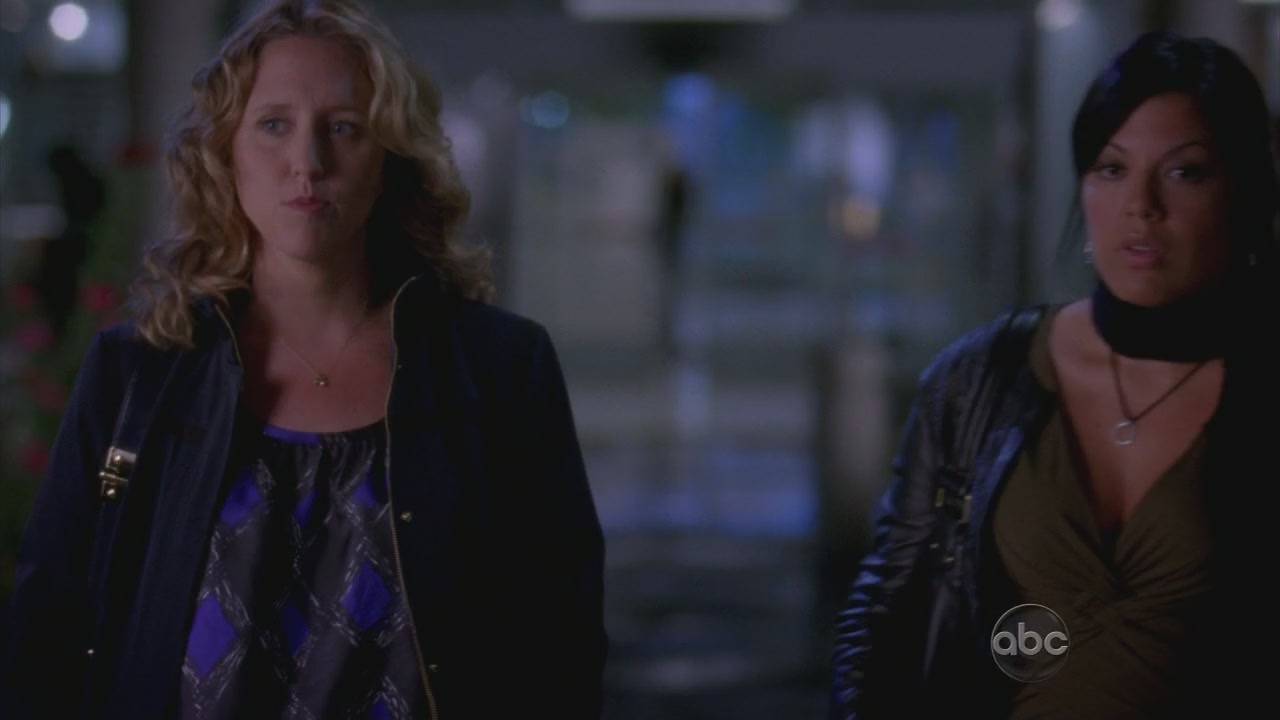 Erica Hahn Grey S Anatomy And Private Practice Wiki