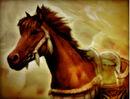 Persian-mare-sw2.jpg