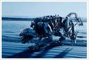 Transformers-event-screenshot-01.png
