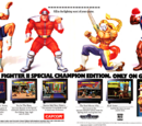 Street Fighter II: Champion Edition Images