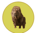 Löwenorden