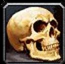 Inv misc bone humanskull 02.png