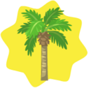 Coconut-Tree.png