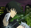 Darker than Black: Gemini of the Meteor Summary