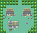 Pokémon Ruby and Sapphire/Part 1