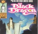 Black Dragon Vol 1 5