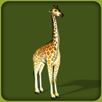 Reticulated Giraffe The Zoo Tycoon Wiki Zoo Tycoon