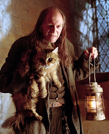 Harry Potter Hausmeister