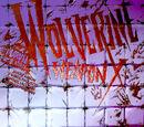 Wolverine: Weapon X Vol 1 6