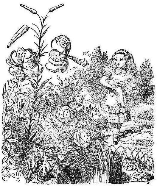 Knave of hearts alice in wonderland disney