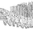 Македонские войны