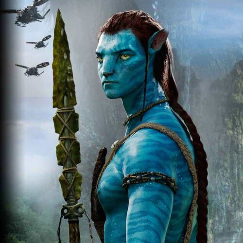 Avatar Jake: Jakesully And Neytiri By Dixetia Crop.jpg