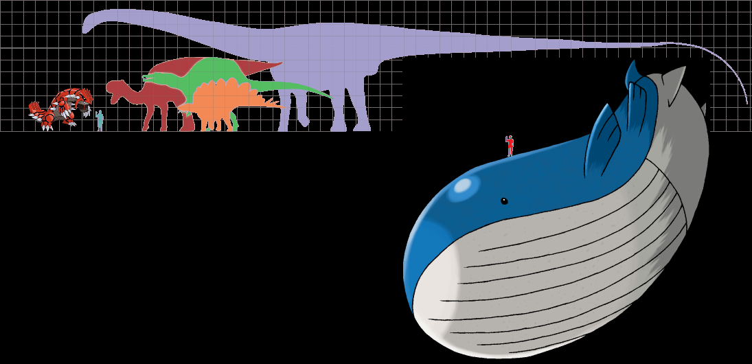 The gallery for --> Wailord Size Wailord Size Comparison
