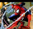 Peter Parker (Earth-20051)