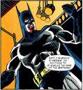 Batman Hollywood Knight 014.jpg