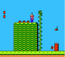 Locations in Super Mario Bros. 2