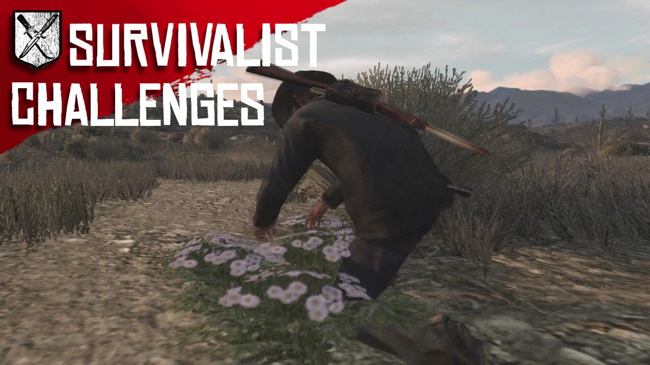 Survivalist game walkthrough